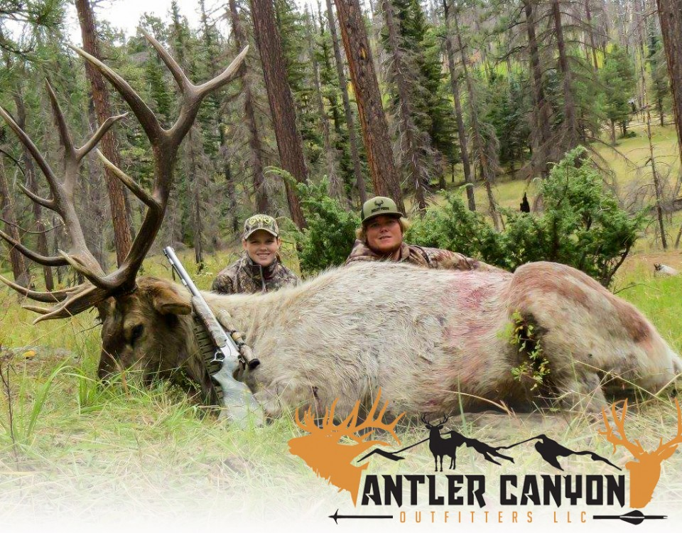 arizona elk hunt
