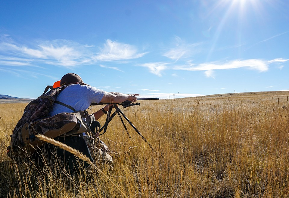 Spot and Stalk Coues Deer Hunt