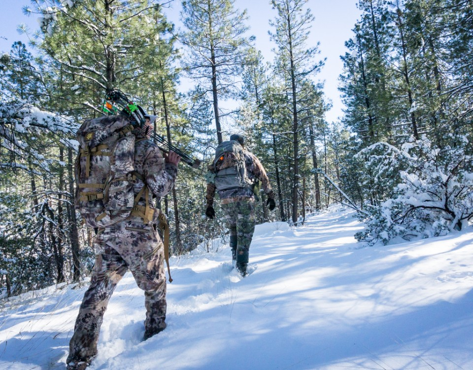 Guided Arizona Elk Hunt